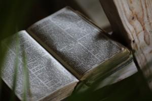 bible-873315_1280